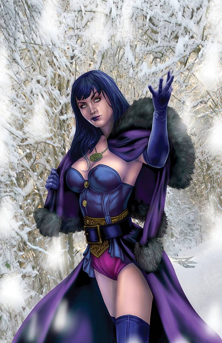 GRIMM FAIRY TALES 2020 HOLIDAY SPECIAL CVR B LEARY JR
