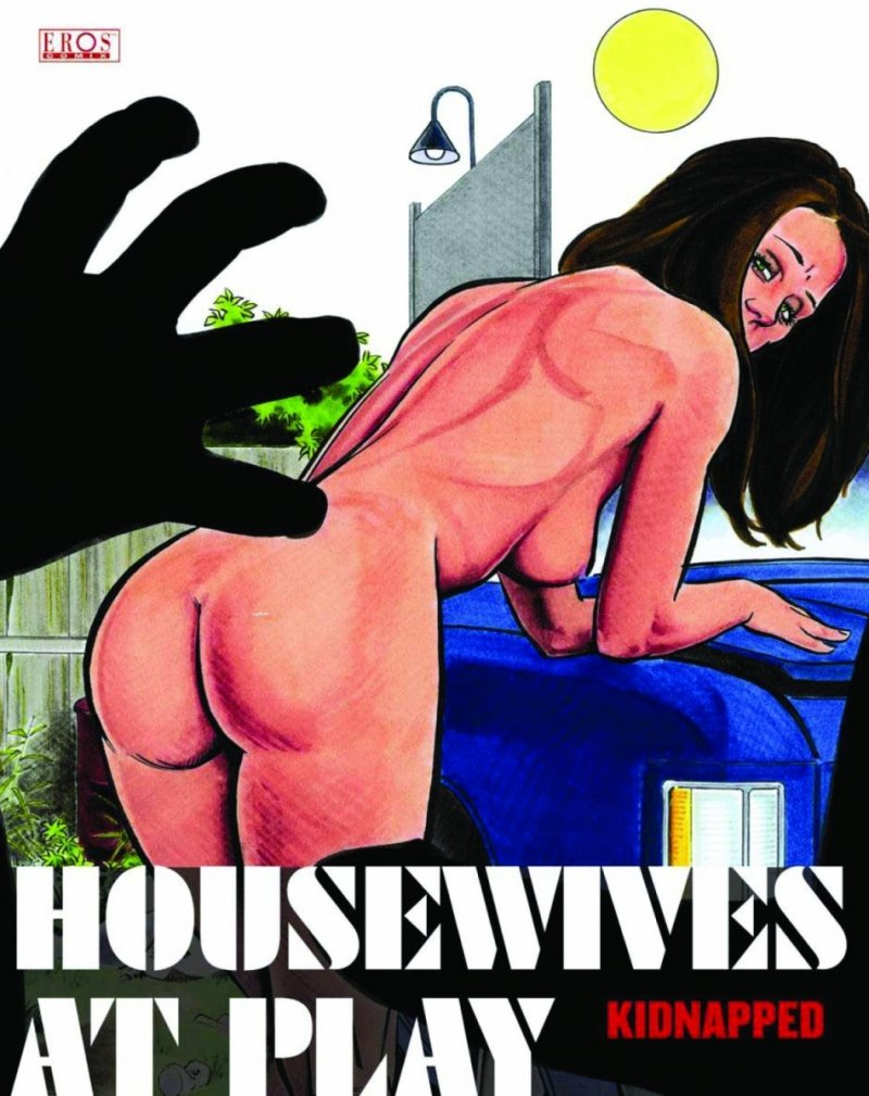 HOUSEWIVES AT PLAY GN KIDNAPPED