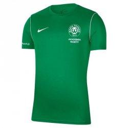 Koszulka Treningowa Nike Warta Poznań S668522 XL zielony