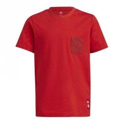 Koszulka adidas FC Bayern Kids Tee GR0678 czerwony 164 cm