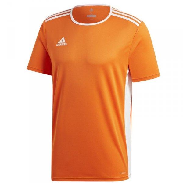 Koszulka adidas Entrada 18 JSY CD8366 pomarańczowy M