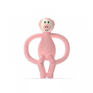 Różowy gryzak masujący ze szczoteczką - Świnka. Matchstick Monkey