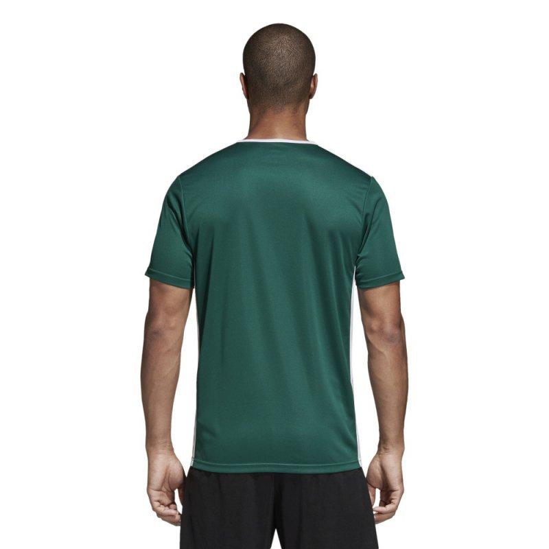 Koszulka adidas Entrada 18 JSY CD8358 zielony XXL