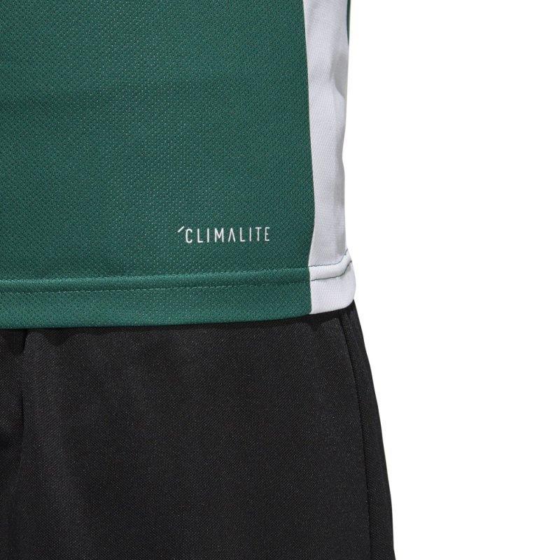 Koszulka adidas Entrada 18 JSY CD8358 zielony S
