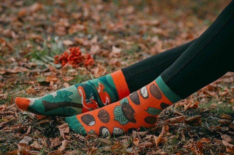 Skarpety kolorowe Spox Sox Wiewiórki