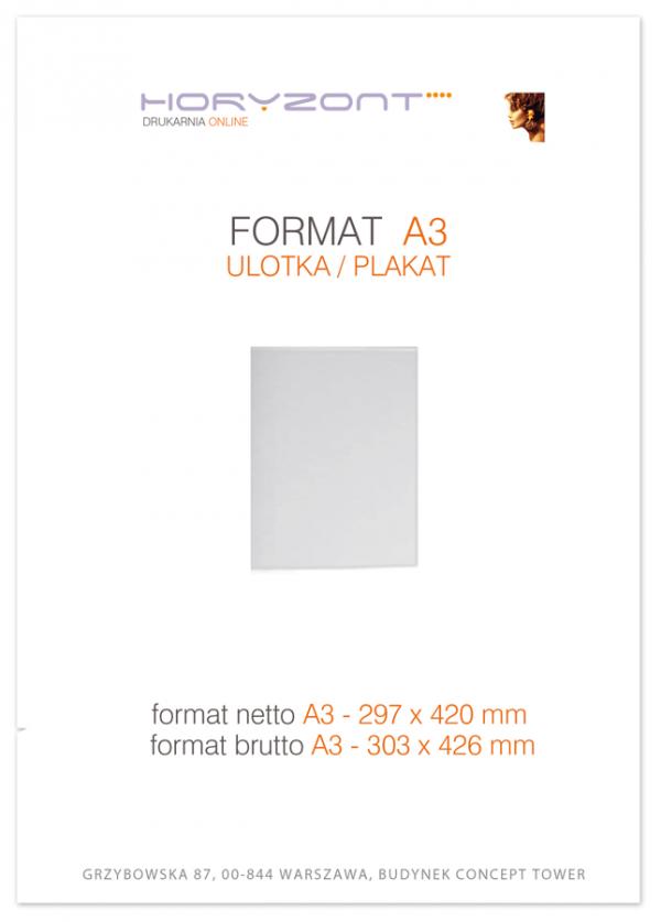 plakat A3,  druk pełnokolorowy jednostronny 4+0, na papierze kredowym, 130 g, 100 sztuk