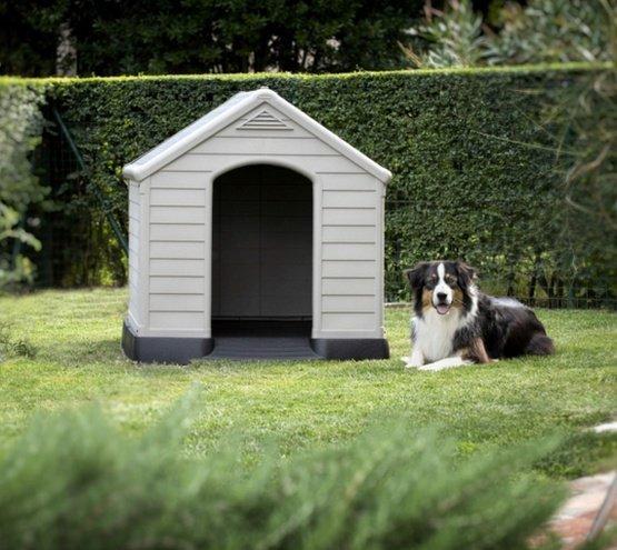 Curver Buda dla psa