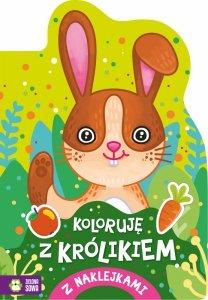 Koloruję z królikiem