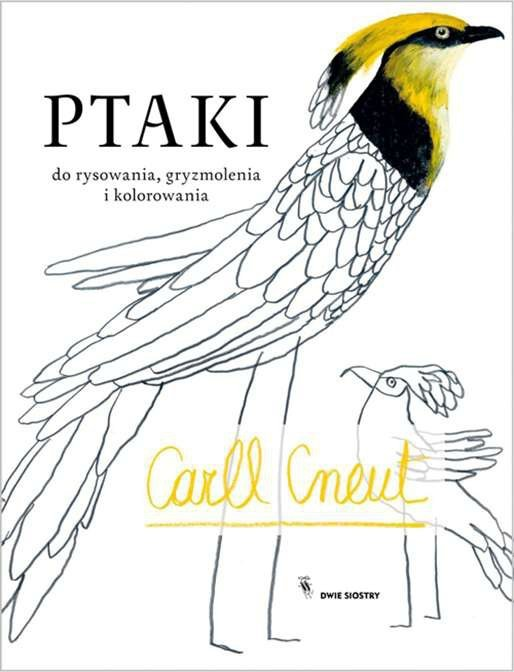 Ptaki do rysowania gryzmolenia i kolorowania