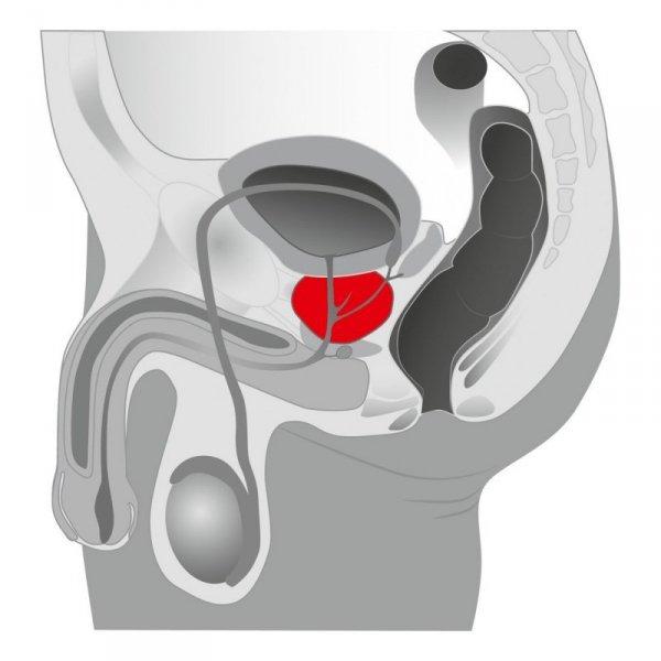 Plug/prostata-Joystick Prostata Booster, black