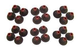 Uszczelniacze zaworowe (komplet na silnik 24 szt) Torrent 08-09 3,6l