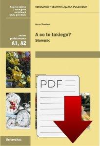 A co to takiego? Obrazkowy słownik języka polskiego (A1, A2) EBOOK