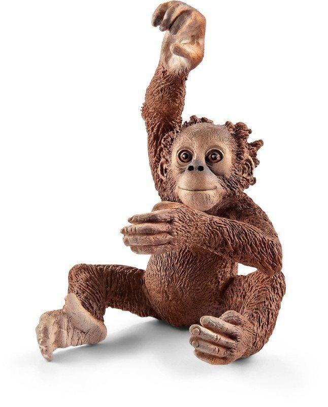 Młody Orangutan [Schleich], Okładka