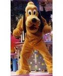 Strój reklamowy - Pies Pluto