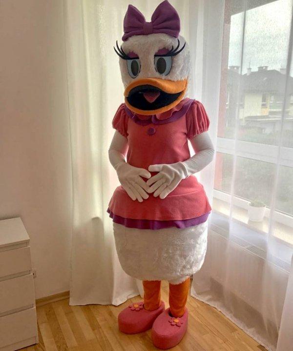 Chodzący pluszak, maskotka reklamowa kaczka Daisy