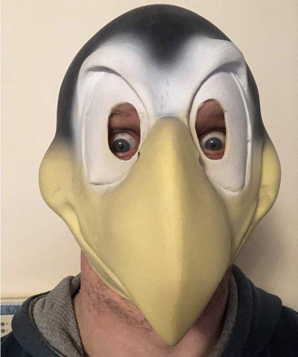 Maska kruka na głowie