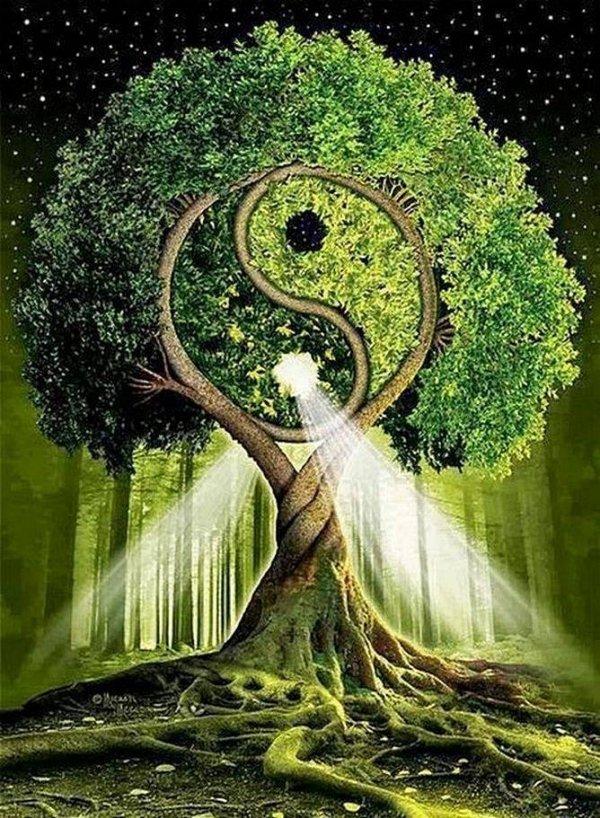Haft Diamentowy Drzewo Harmonii 30x40 cm