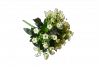 Bukiet Kalanchoe x 6 kwiatów MIX - DX88105