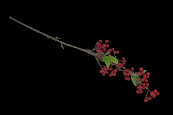 Gałązka dekoracyjna z czerwonymi owocami 70 cm