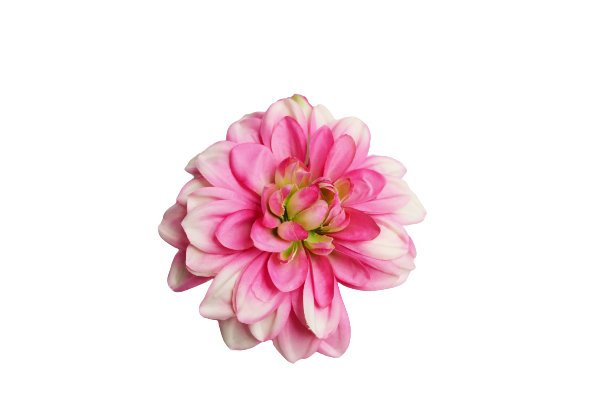 różowy #2