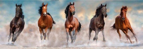 Puzzle 1000 elementów Panorama Horses