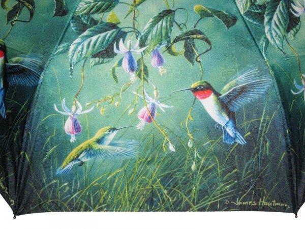 Kolibry - składana parasolka damska Galleria