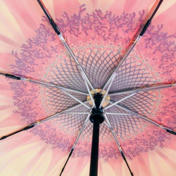 Słonecznik - parasolka składana full-auto Von Lilienfeld
