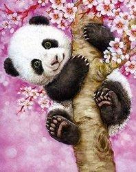 Obraz Malowanie po numerach - Panda
