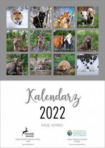 Jelonkowy Kalendarz 2022