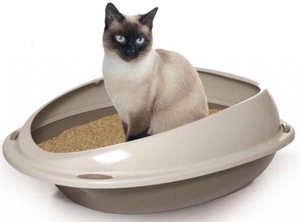 YARRO MAŁA Kuweta dla kota z profilowaną, jasną ramką 45x36x15,5cm, pudrowa zieleń [Y10530 ZIEL]