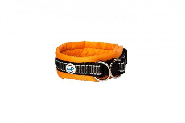 ALL FOR DOGS Klasyczna obroża Pomarańczowa L