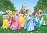 Fototapeta Disney Princess Księżniczki 360x254cm