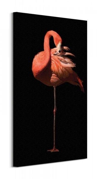 Flamingo II - obraz na płótnie