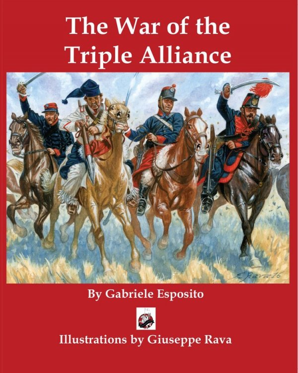 The War of the Triple Alliance Paperback