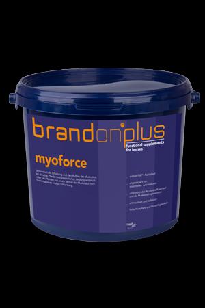 Myoforce - rozbudowa mięśni 3 kg  Brandon PLUS