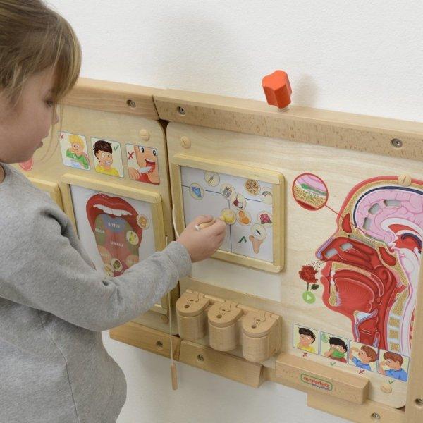 MASTERKIDZ Tablica Edukacyjna Zmysł Węchu