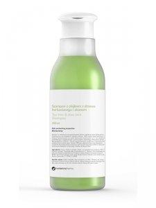 Botanicapharma - Tea Tree & Aloe Vera Shampoo szampon z olejkiem z drzewa herbacianego i aloesem 250ml