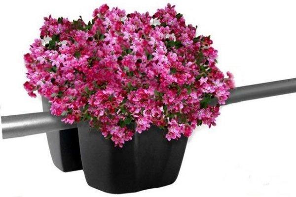 Blumenkasten Balkonkasten crown 240 anthrazit