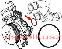 O-ring pompy wody Chrysler 300 3,0 CRD 2012- 46320306F
