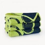 Ręcznik plażowy LEGWAN zielony - rozmiar 100x160