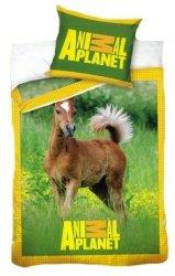 Pościel licencyjna Animal Planet 100% bawełna 160x200 lub 140x200 - Konie 8001