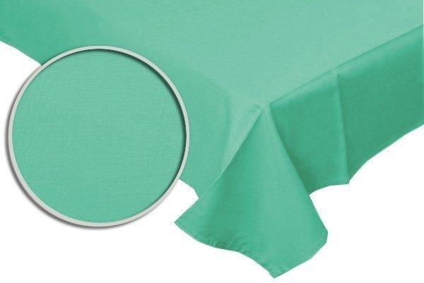 Prześcieradło RUBIN 100% bawełna 160x200 bez gumki wz. mięta 502/1