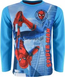 Bluzka Spiderman Web niebieska