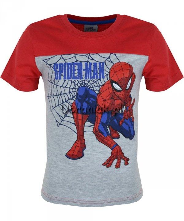 T-shirt Spider-man czerwony