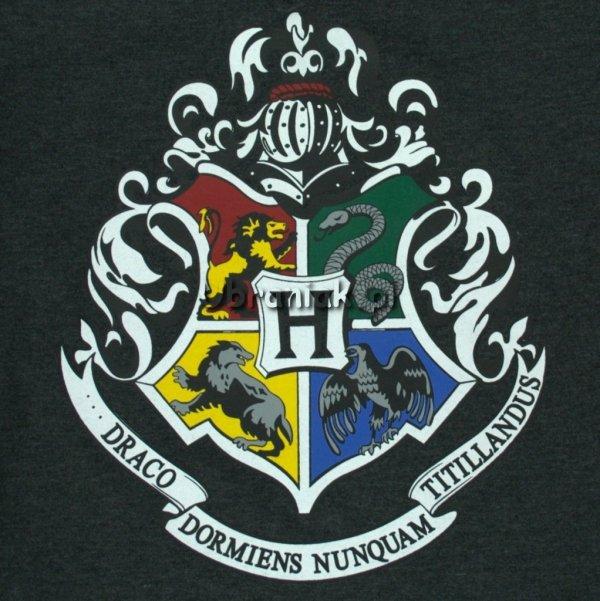 T-shirt Harry Potter szary