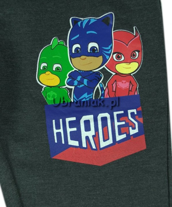 Spodnie Pidżamersi Heroes szare