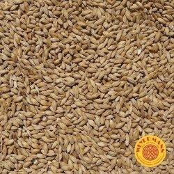 Słód pilzneński 3-5 EBC Weyermann® 1 kg
