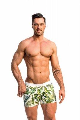 Alpha Male Playo Palm Pánské plavky