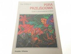 PORA PRZEJŚCIOWA - Gail Sheehy