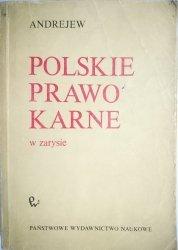 POLSKIE PRAWO KARNE W ZARYSIE - Andrejew 1986